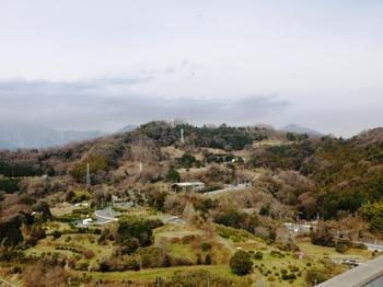 east_view.JPG