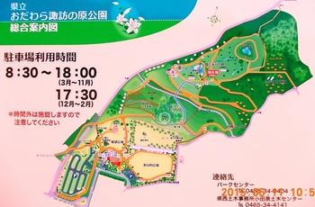 suwanohara_park.JPG